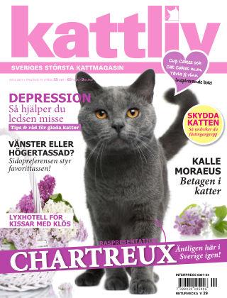 Kattliv 2013-05-28