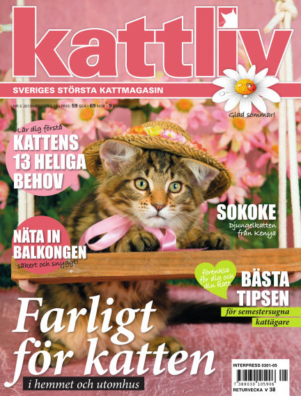Kattliv July 09, 2013 00:00