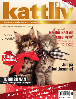 Kattliv 2013-12-03