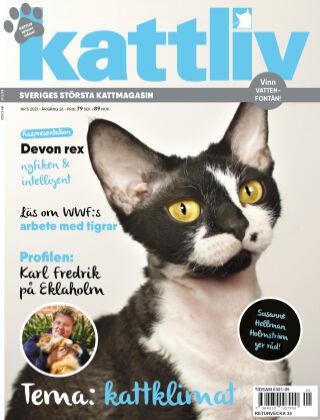 Kattliv 2021-07-06