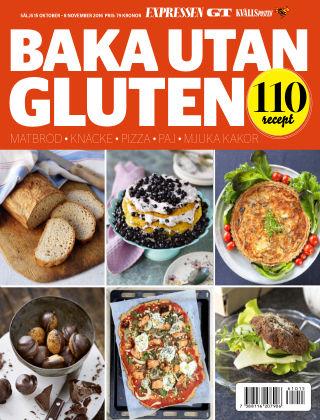 Laktos- och glutenfritt 2016-10-15