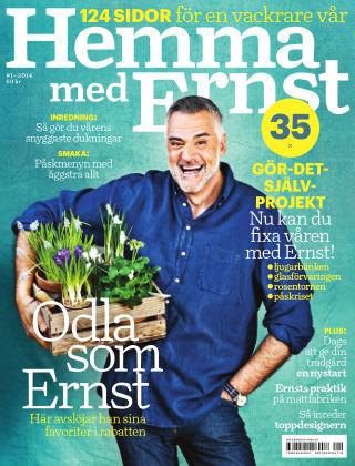 Hemma med Ernst (Inga nya utgåvor) 2014-03-25