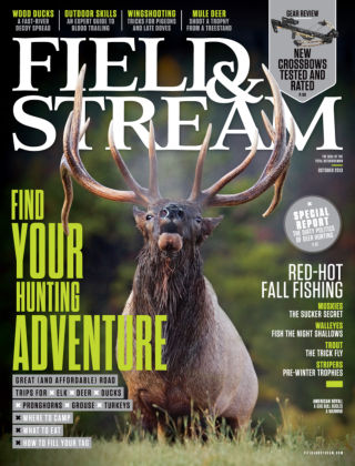 Field & Stream October 2013