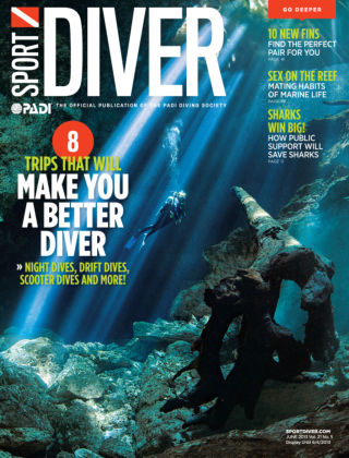 Sport Diver June 2013