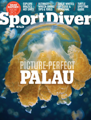 Sport Diver March 2014