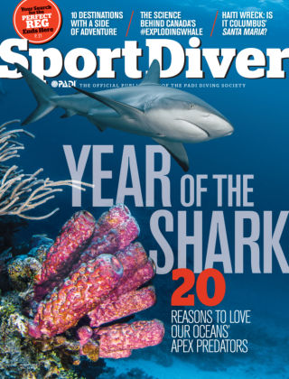 Sport Diver August 2014