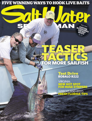 Salt Water Sportsman November 2013