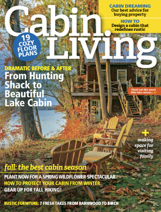 Cabin Living Oct 2016
