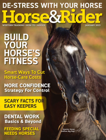 Horse & Rider December 30, 2014 00:00
