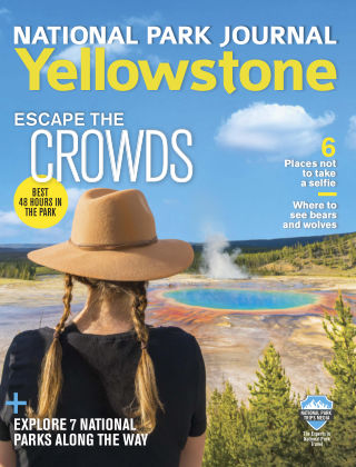 National Park Trips Yellowstone Journal