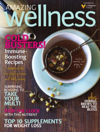 Amazing Wellness Winter 2013