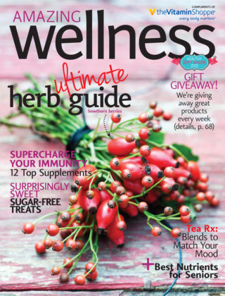 Amazing Wellness Early Winter 2013