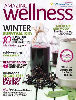 Amazing Wellness Nov / Dec 2015