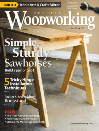 Popular Woodworking June 2018