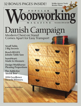 Popular Woodworking November 2016