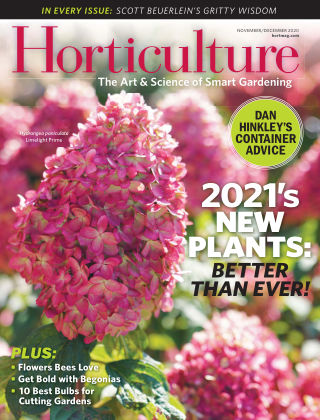 Horticulture Nov Dec 2020