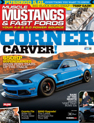 Muscle Mustangs & Fast Fords July 2015