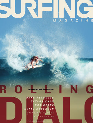 Surfing November 2013