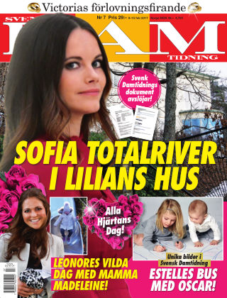 Svensk Damtidning 17-07