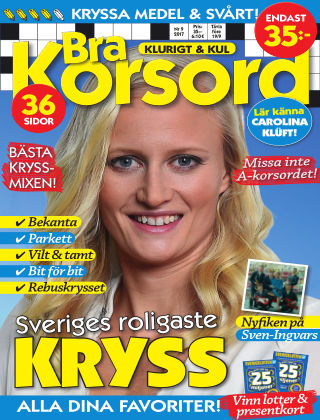 Bra Korsord 17-09