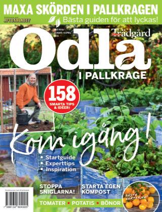 Allers Trädgård Special: Odla Odla i pallkrage
