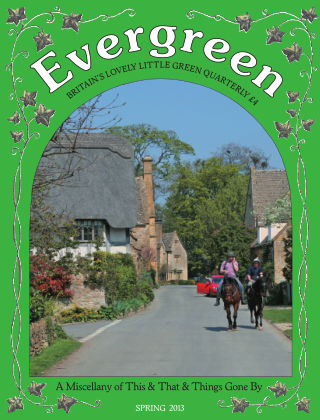 Evergreen Spring 2013