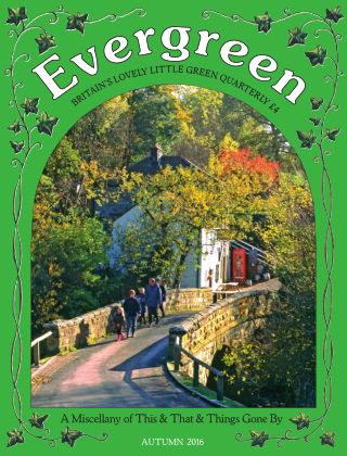 Evergreen Autumn 2016