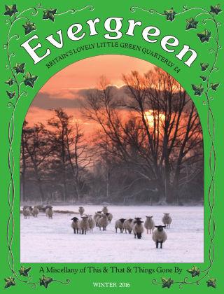 Evergreen Winter 2016