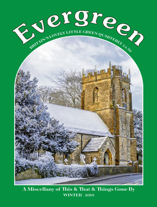 Evergreen Winter 2018