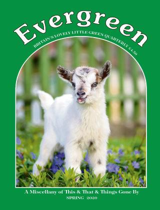 Evergreen Spring 2020
