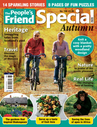 The People's Friend Special Issue 198
