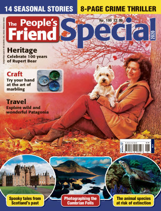 The People's Friend Special Issue 199
