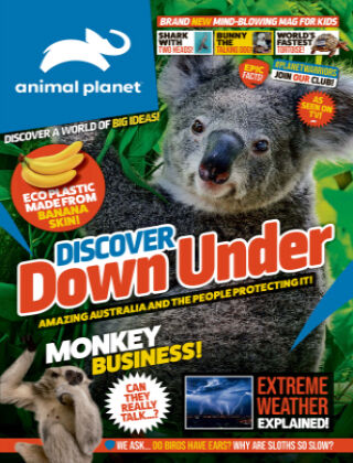 Animal Planet Magazine Issue 2