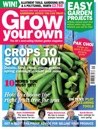 Grow Your Own September 2016