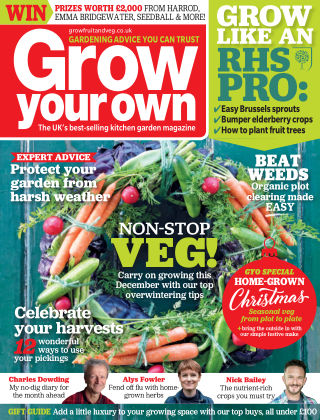 Grow Your Own December 2019