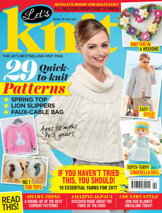 Let's Knit February 2017