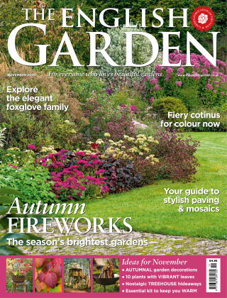 The English Garden November 2020