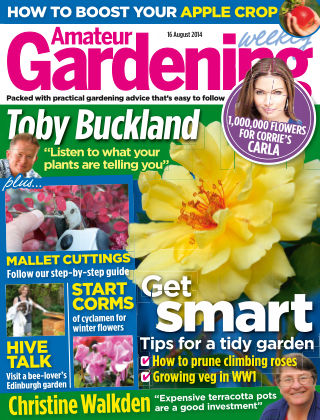 Amateur Gardening 16th August 2014
