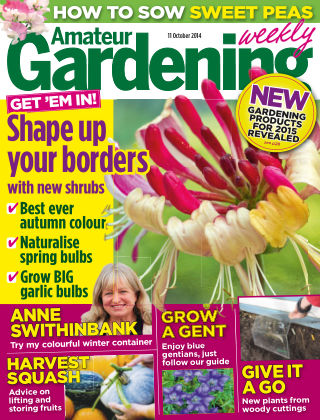 Amateur Gardening 11th October 2014
