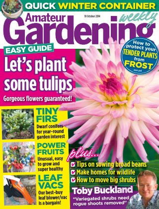 Amateur Gardening 18th October 2014