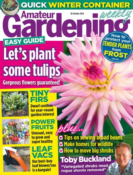 Amateur Gardening October 21, 2014 00:00