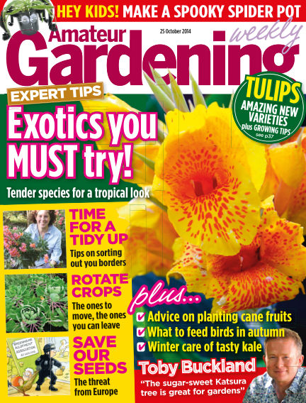 Amateur Gardening October 28, 2014 00:00