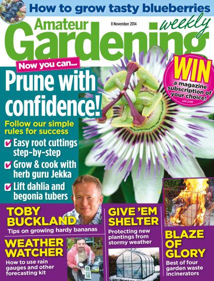 Amateur Gardening November 11, 2014 00:00