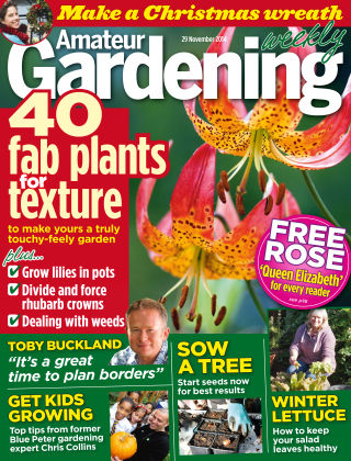 Amateur Gardening 29th November 2014
