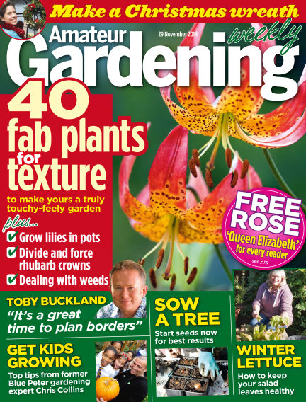Amateur Gardening December 02, 2014 00:00