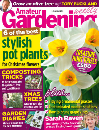 Amateur Gardening 6th December 2014
