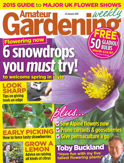 Amateur Gardening January 27, 2015 00:00