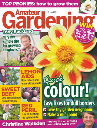 Amateur Gardening 13th June 2015