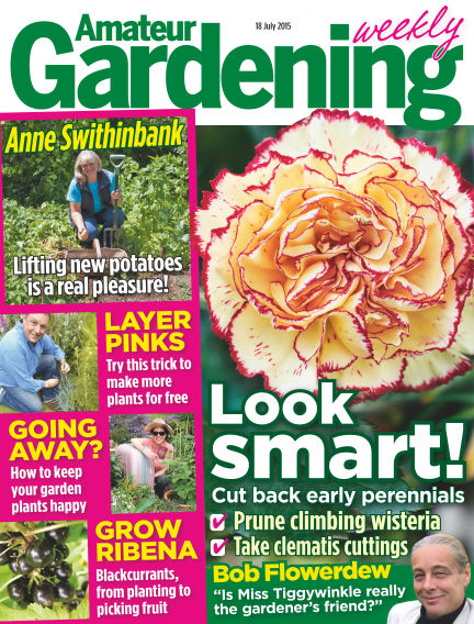 Amateur Gardening July 21, 2015 00:00