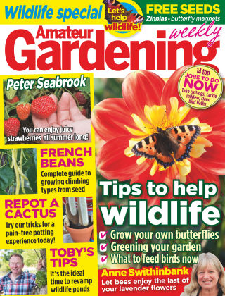 Amateur Gardening 08th August 2015